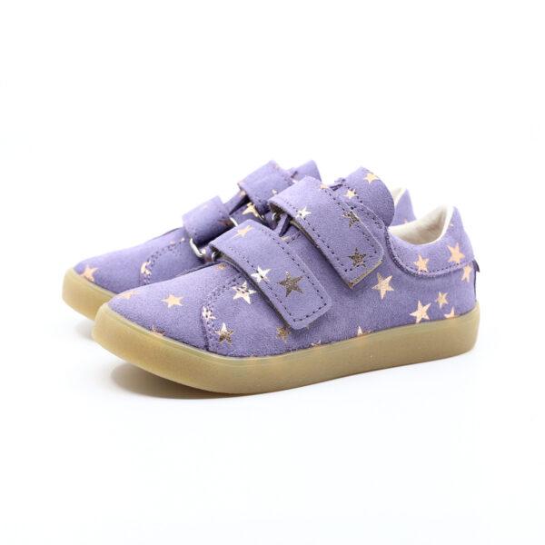 Mrugala tala lavender star
